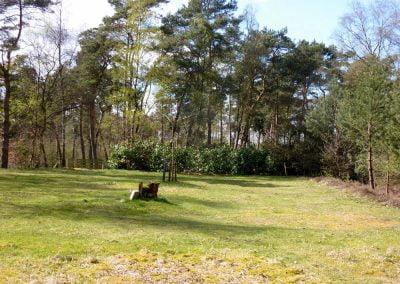 Heideveld-P1050082
